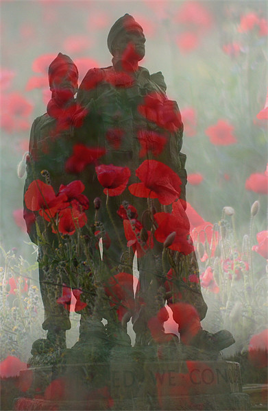We Shall Remember Them Canvas print by Lynne Morris (Lswpp)