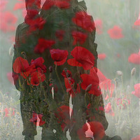 Buy canvas prints of We Shall Remember Them by Lynne Morris (Lswpp)