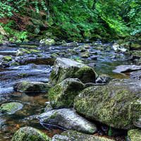 Buy canvas prints of Hebden Water by Sandra Pledger