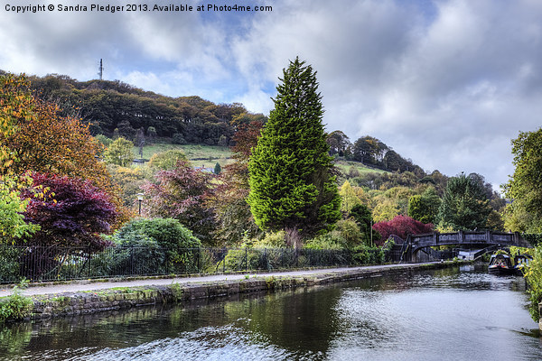 Park and Canal at Hebden Bridge Canvas Print by Sandra Pledger