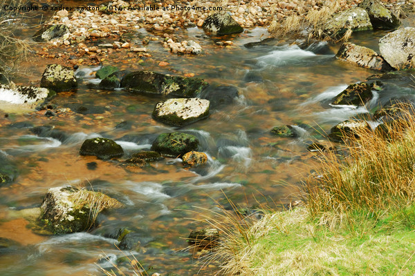 WATER ROUND STONES Canvas print by andrew saxton