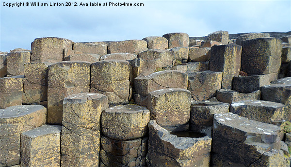 The Giants causeway Canvas print by William Linton
