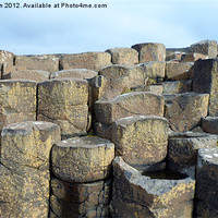 Buy canvas prints of The Giants causeway by William Linton