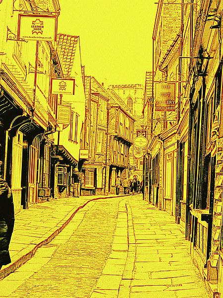 York Shambles Canvas print by Robert Gipson