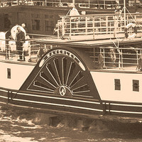 Buy canvas prints of Waverley Paddle Steamer by Steve Purnell