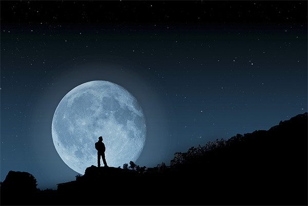 The Man In The Moon Canvas print by Steve Purnell