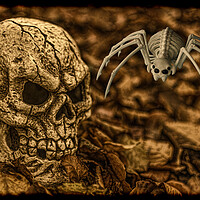 Buy canvas prints of Halloween Skull And Spider by Steve Purnell