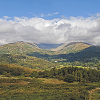 Buy canvas prints of Fairfield Horseshoe by Roger Green
