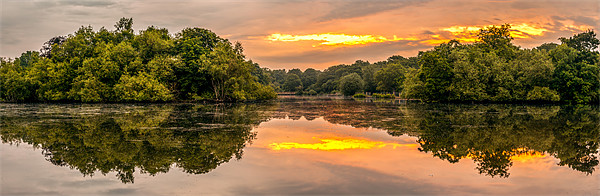 Epping Forest Sunrise Canvas Print by Gary Rayner