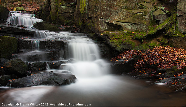 Lumsdale Waterfall Canvas Print by Elaine Whitby