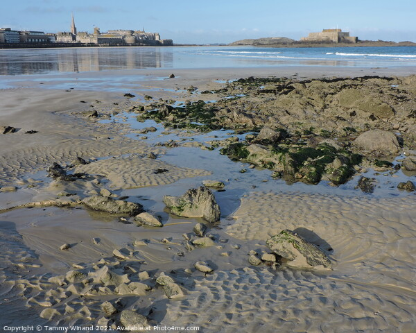 Low Tide on the Coast of St Malo France Print by Tammy Winand
