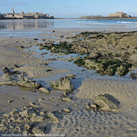 Buy canvas prints of Low Tide on the Coast of St Malo France by Tammy Winand