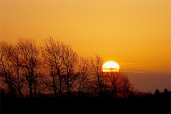 sunrise over the fens Canvas print by Elouera Photography
