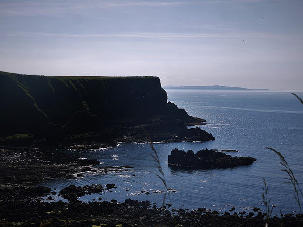 Giants Causeway Trail Canvas print by Claire Clarke