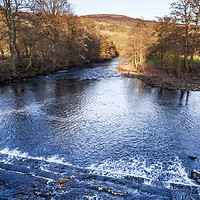 Buy canvas prints of River Derwent, Derbyshire by Martyn Williams