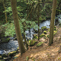 Buy canvas prints of Burbage Brook, Padley Gorge by Martyn Williams