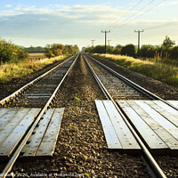 Buy canvas prints of Straight Down The Line by Martyn Williams