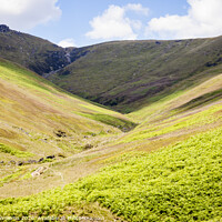 Buy canvas prints of Crowden Clough, Kinder Scout by Martyn Williams