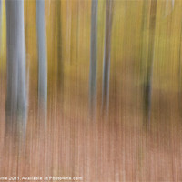 Buy canvas prints of Tree abstract by John Barrie