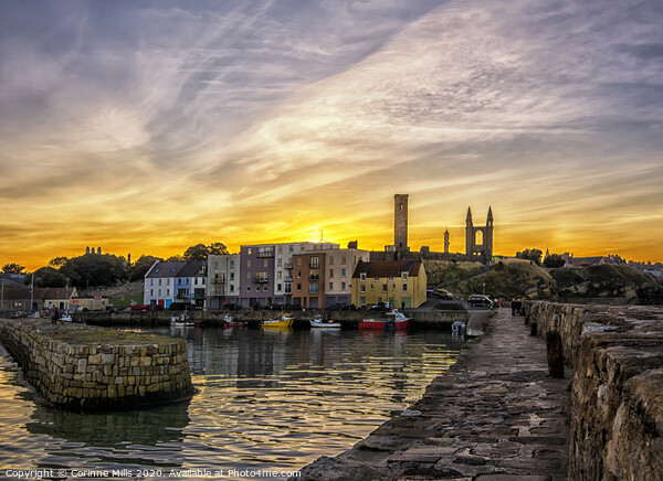 St Andrews Harbour after sunset Canvas Print by Corinne Mills