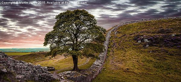 Sycamore Gap - Iconic Northumbria Canvas print by Martin Jones