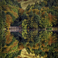 Buy canvas prints of Autumnal Reflections by Martin Jones