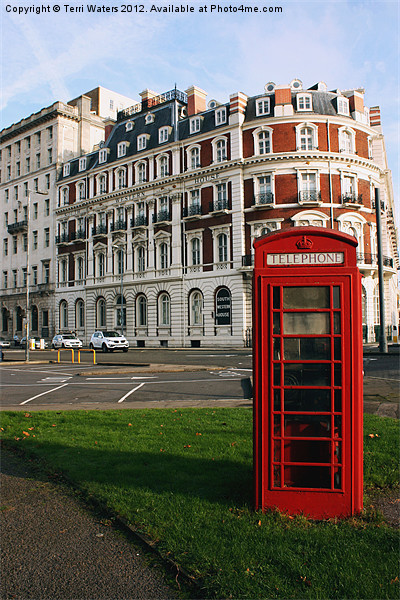 South Western House Telephone Box Canvas Print by Terri Waters