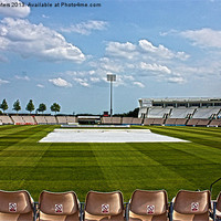 Buy canvas prints of Hampshire County Cricket Ground by Terri Waters