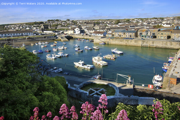 Looking Down at Porthleven Inner Harbour Framed Mounted Print by Terri Waters