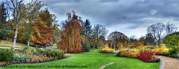 Harlow Carr Panorama Canvas print by Colin Metcalf