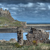Buy canvas prints of Lindifarne Castle (Holy Island) by Colin Metcalf