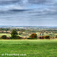 Buy canvas prints of Pinewoods Panorama by Colin Metcalf