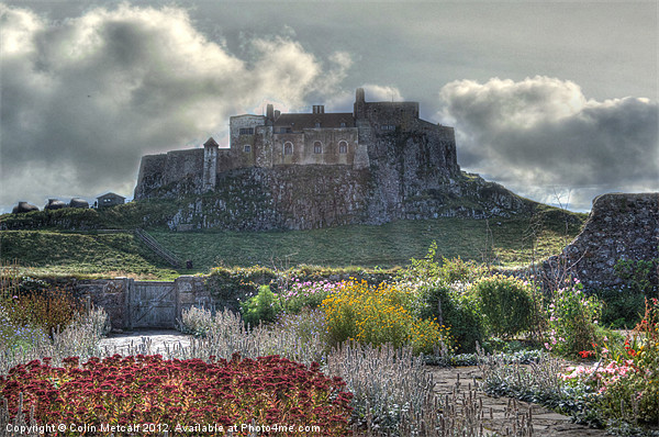 Lindisfarne Castle (Holy Island) Canvas print by Colin Metcalf