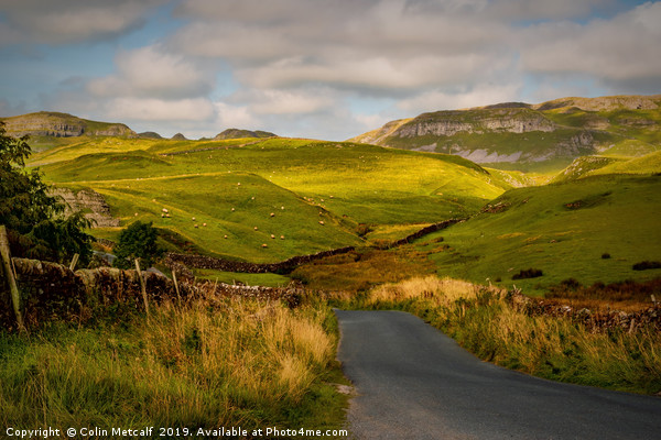 Dales Road Canvas print by Colin Metcalf