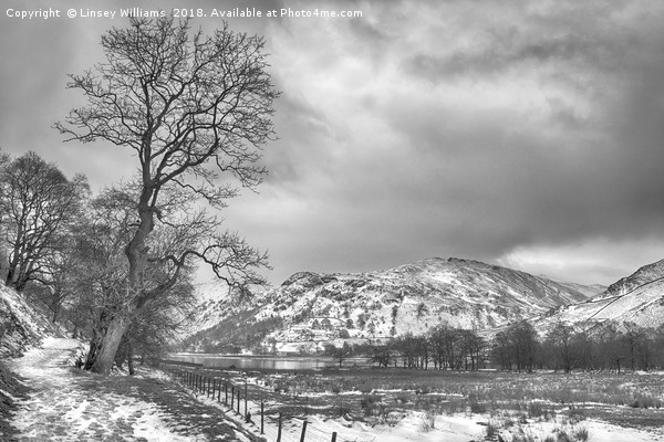 Path to Patterdale Canvas print by Linsey Williams