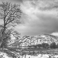 Buy canvas prints of Path to Patterdale by Linsey Williams