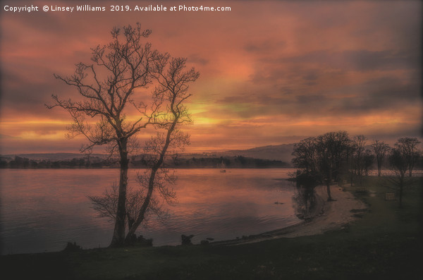 A Windermere Sunset Canvas print by Linsey Williams