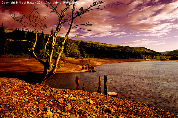 Silent Valley Canvas print by Nigel  Hatton
