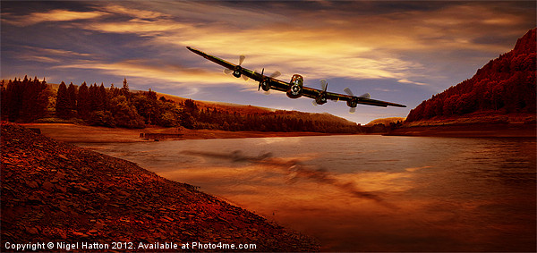 Flying Low Canvas print by Nigel  Hatton