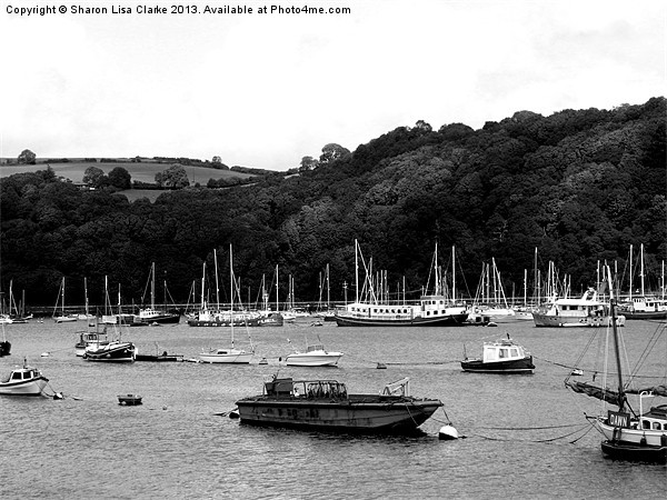 River Dart Canvas Print by Sharon Lisa Clarke