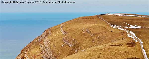 great orme Canvas print by Andrew Poynton