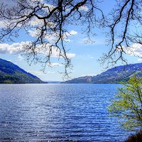 Buy canvas prints of Loch Lomond Side by Valerie Paterson