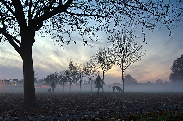 Misty afternoon in the park Canvas print by Gary Eason + Flight Artworks