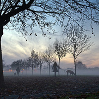 Buy canvas prints of Misty afternoon in the park by Gary Eason + Flight Artworks