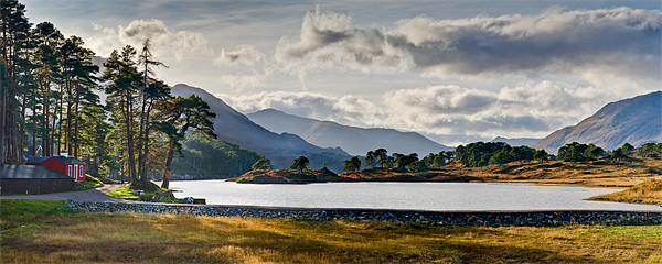 Glen Affric panorama I Canvas print by Gary Eason + Flight Artworks