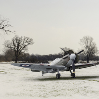 Buy canvas prints of Spitfire in the snow by Gary Eason + Flight