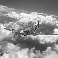 Buy canvas prints of Shark mouth Spitfire B&W version by Gary Eason