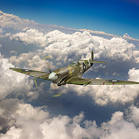 Buy canvas prints of Shark mouth Spitfire by Gary Eason