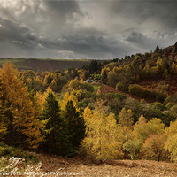Buy canvas prints of Llanidloes autumn landscape by Creative Photography Wales