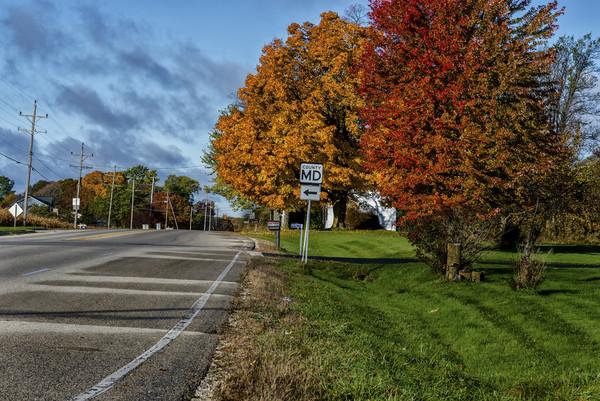Autumn Leaves Canvas print by Banjiwayume Photography